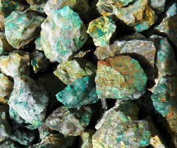 mineral 5lb Bulk Tumbled Green Dalmation Jasper Stones